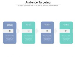 Audience Targeting Ppt Powerpoint Presentation Infographics Demonstration Cpb