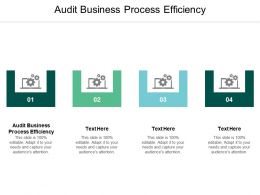 Audit Business Process Efficiency Ppt Powerpoint Presentation Slides Samples Cpb