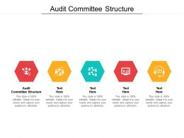 Audit Committee Structure Ppt Powerpoint Presentation File Images Cpb