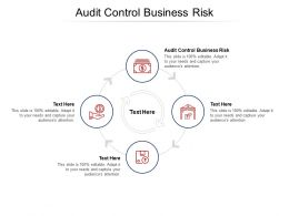 Audit Control Business Risk Ppt Powerpoint Presentation Infographic Template Skills Cpb
