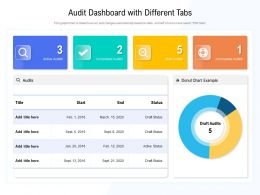 Audit Dashboard With Different Tabs