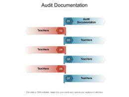 Audit Documentation Ppt Powerpoint Presentation Ideas Background Image Cpb