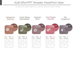 Audit Effort Ppt Template Powerpoint Ideas