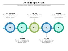 Audit Employment Ppt Powerpoint Presentation Infographic Template Pictures Cpb