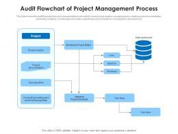 Audit Flowchart Of Project Management Process