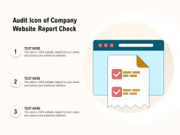 Audit Icon Of Company Website Report Check
