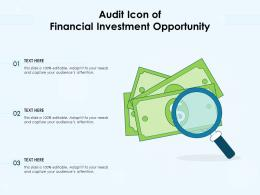Audit Icon Of Financial Investment Opportunity