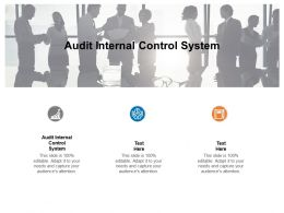 Audit Internal Control System Ppt Powerpoint Presentation Layouts Ideas Cpb