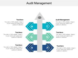 Audit Management Ppt Powerpoint Presentation File Ideas Cpb