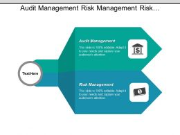 Audit Management Risk Management Risk Evaluation Mitigation Strategies Cpb
