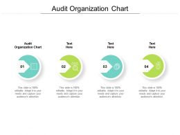 Audit Organization Chart Ppt Powerpoint Presentation Pictures Graphics Design Cpb