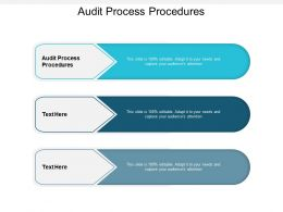 Audit Process Procedures Ppt Powerpoint Presentation Infographics Graphics Design Cpb