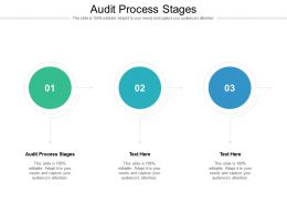 Audit Process Stages Ppt Powerpoint Presentation Professional Diagrams Cpb