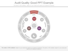 Audit Quality Good Ppt Example