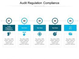 Audit Regulation Compliance Ppt Powerpoint Presentation File Show Cpb