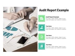Audit Report Example Ppt Powerpoint Presentation Infographics Themes Cpb