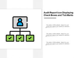 Audit Report Icon Displaying Check Boxes And Tick Marks