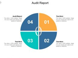 Audit Report Ppt Powerpoint Presentation File Rules Cpb