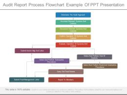 Audit Report Process Flowchart Example Of Ppt Presentation