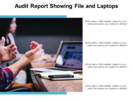 Audit Report Showing File And Laptops