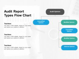 Audit Report Types Flow Chart