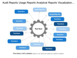 Audit Reports Usage Reports Analytical Reports Visualization Layer
