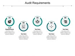 Audit Requirements Ppt Powerpoint Presentation Model Background Image Cpb