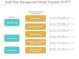 Audit Risk Management Model Example Of Ppt