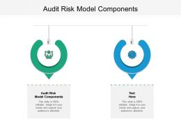 Audit Risk Model Components Ppt Powerpoint Presentation File Outfit Cpb
