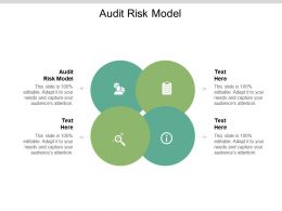 Audit Risk Model Ppt Powerpoint Presentation Infographics Objects Cpb