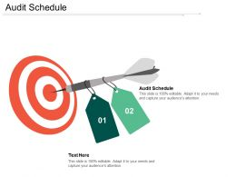 Audit Schedule Ppt Powerpoint Presentation File Skills Cpb