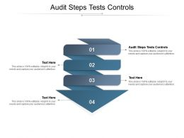 Audit Steps Tests Controls Ppt Powerpoint Presentation Infographics Example Topics Cpb