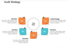 Audit Strategy Ppt Powerpoint Presentation Styles Example Cpb
