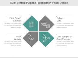 Audit System Purpose Presentation Visual Design