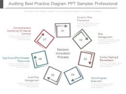 Auditing Best Practice Diagram Ppt Samples Professional