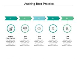 Auditing Best Practice Ppt Powerpoint Presentation Layouts Objects Cpb