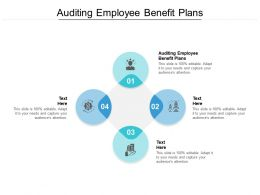 Auditing Employee Benefit Plans Ppt Powerpoint Presentation Infographic Template Graphics Download Cpb
