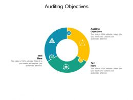 Auditing Objectives Ppt Powerpoint Presentation Model Slide Download Cpb