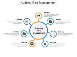 Auditing Risk Management Ppt Powerpoint Presentation Outline Rules Cpb