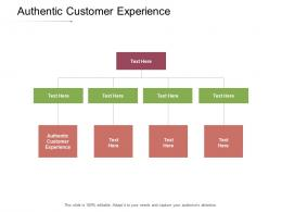 Authentic Customer Experience Ppt Powerpoint Presentation Show Themes Cpb