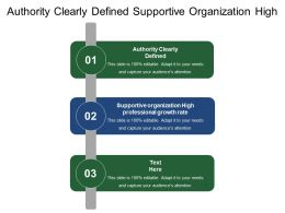 Authority Clearly Defined Supportive Organization High Professional Growth Rate