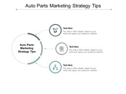 Auto Parts Marketing Strategy Tips Ppt Powerpoint Presentation Layouts Introduction Cpb
