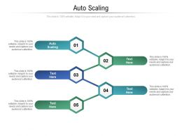 Auto Scaling Ppt Powerpoint Presentation Slides Show Cpb