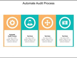 Automate Audit Process Ppt Powerpoint Presentation Gallery Design Inspiration Cpb