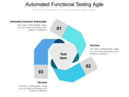 Automated Functional Testing Agile Ppt Powerpoint Presentation Styles Vector Cpb