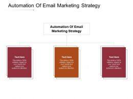 Automation Of Email Marketing Strategy Ppt Powerpoint Presentation Professional Topics Cpb