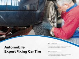 Automobile Expert Fixing Car Tire