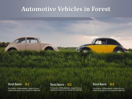 Automotive Vehicles In Forest