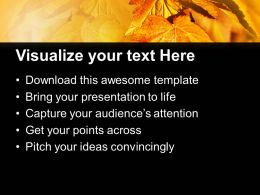 Autumn Leaves Background Beauty Powerpoint Templates Ppt Themes And Graphics 0213