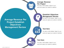 Average Revenue Per Project Establish Objectives Management Review